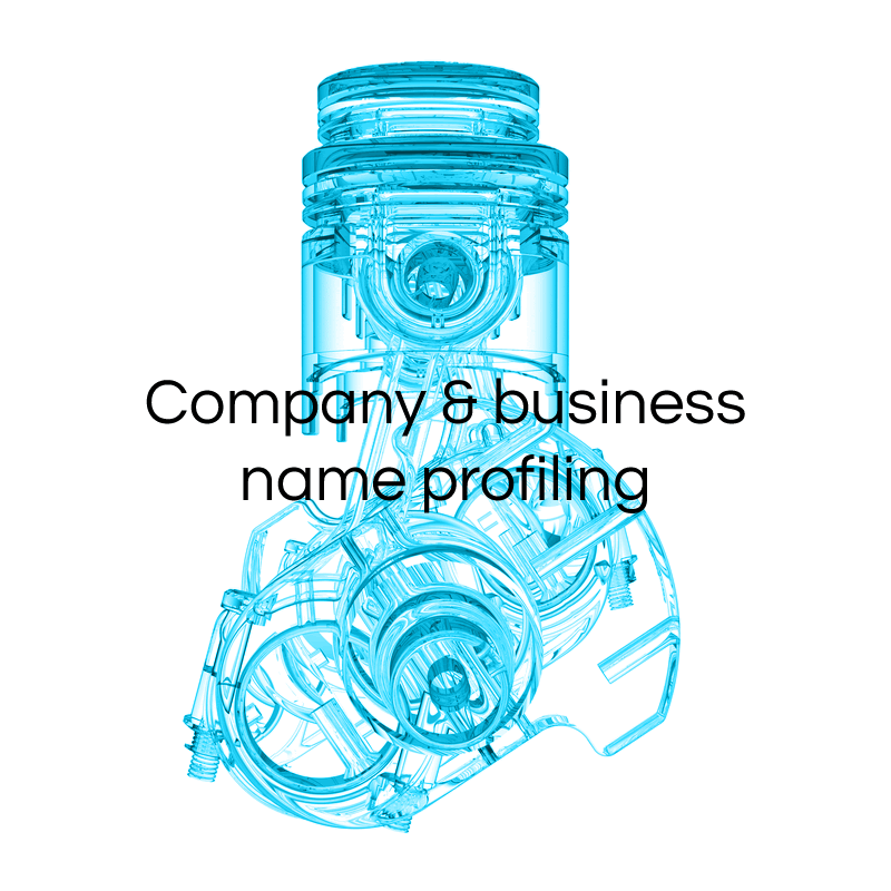 Company and business name profiling