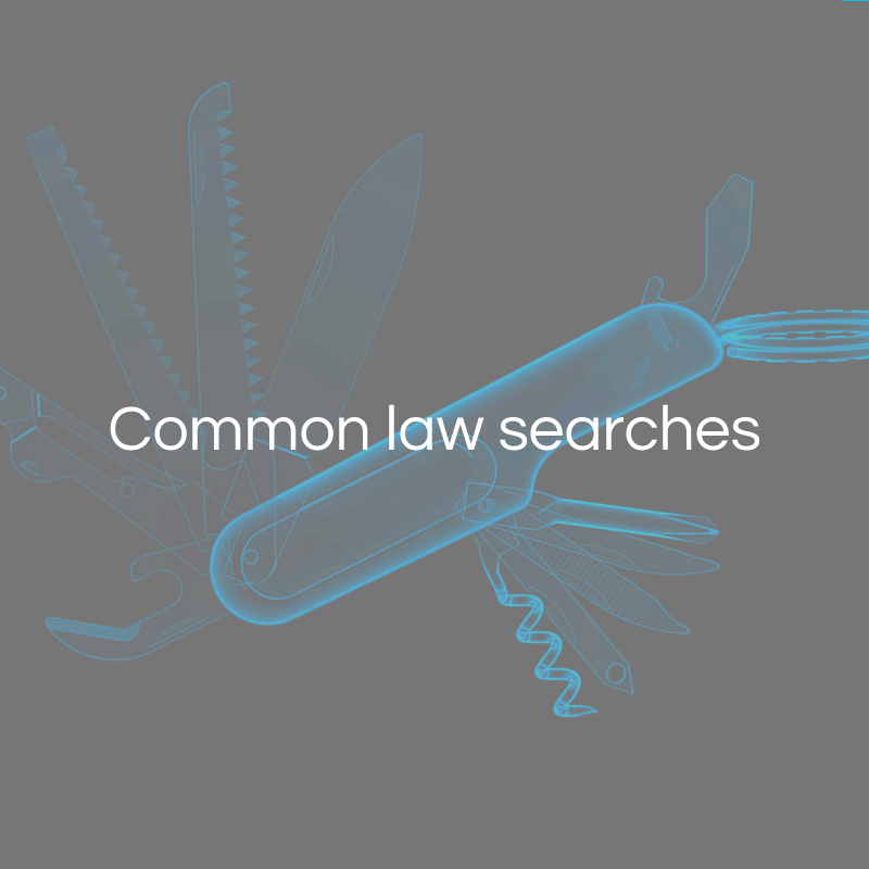 Common law searches