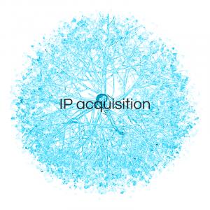 IP Acquisition